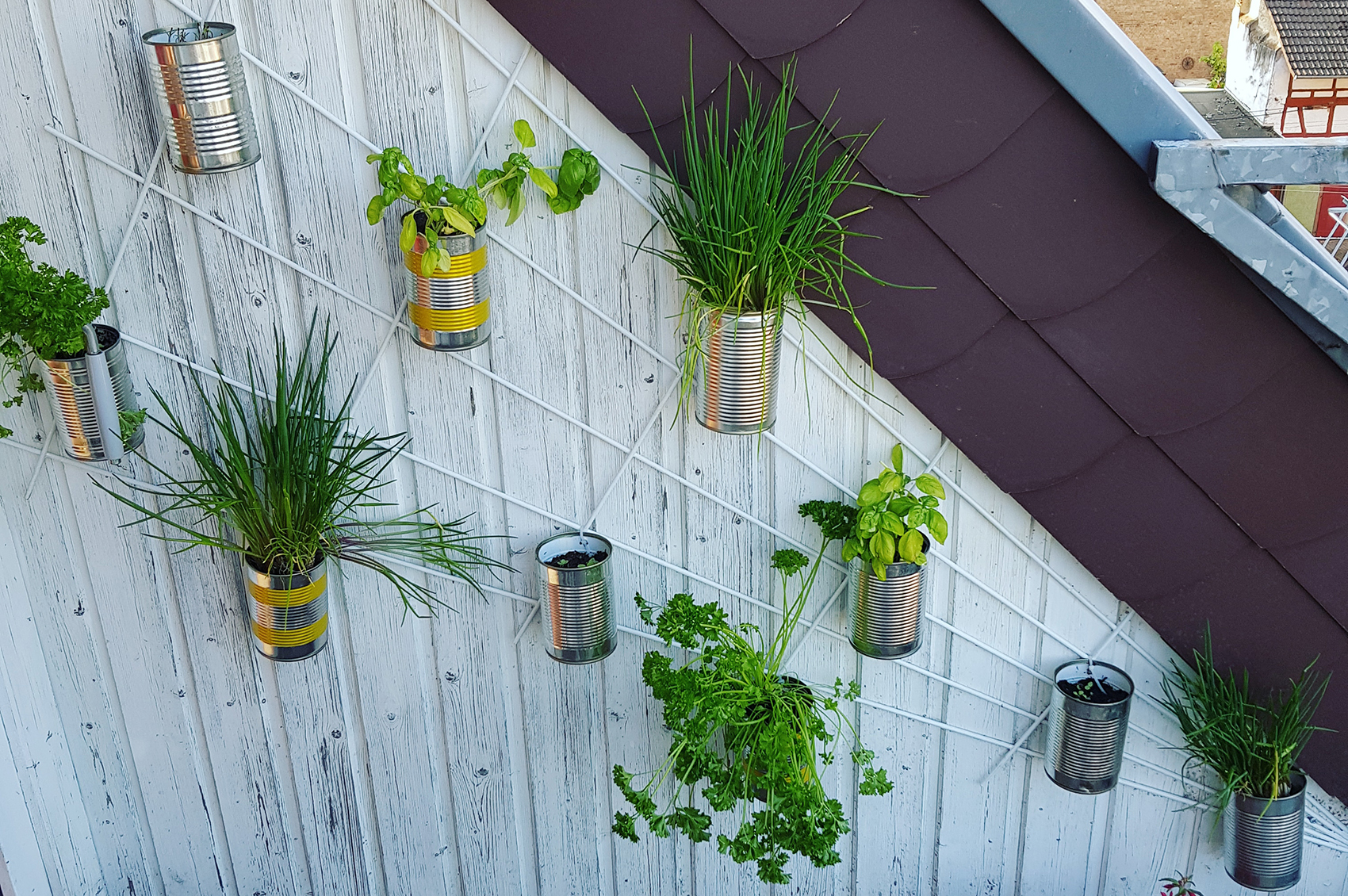 Herbwall - fresh herbs in small space ⋆ Seasons in Garden